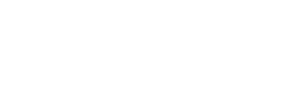 STR Logo White